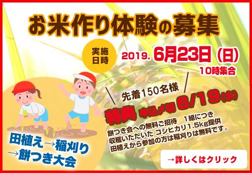 お米づくり体験参加者募集のお知らせ
