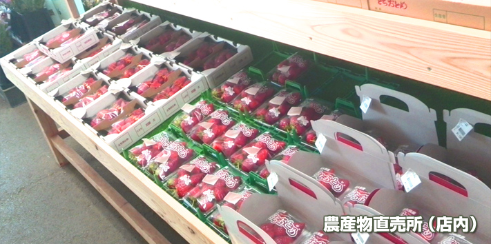 農産物直売所(店内)